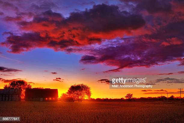 Farm and field at sunset, Wisconsin