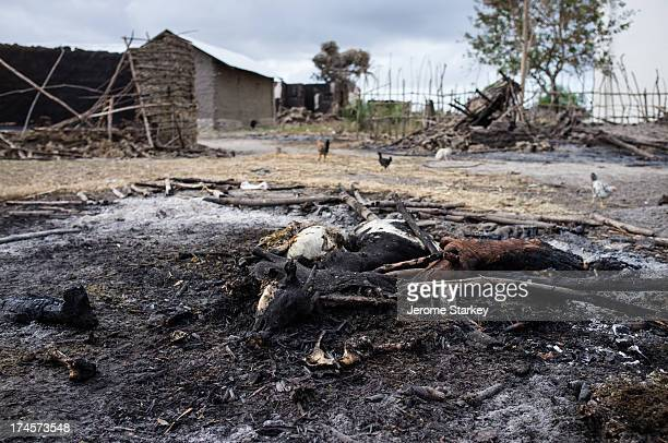 Farm animals burnt alive in a raid on Kilelengwani village in Kenya's troubled Tana Delta, where at least 29 people were killed, pictured Sept 13,...