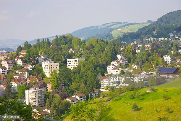 Farm animals on slopes in Lucerne