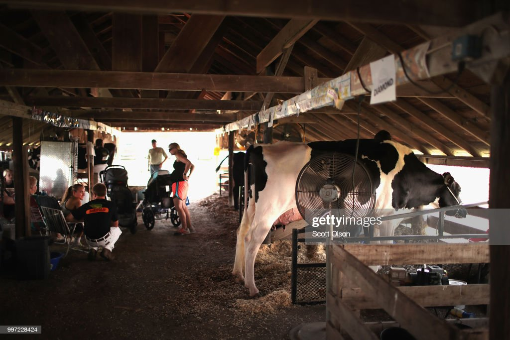 Farm families sit with their dairy cows while they wait for judging to begin at the Iowa County Fair on July 12, 2018 in Marengo, Iowa. The fair, like many in counties throughout the Midwest, helps to nurture a new generation of farmers by teaching the fundamentals of quality livestock care and breeding. Farmers in Iowa and the rest of the country, who are already faced with decade-low profits, are bracing for the impact a trade war with China may have on their bottom line going forward.