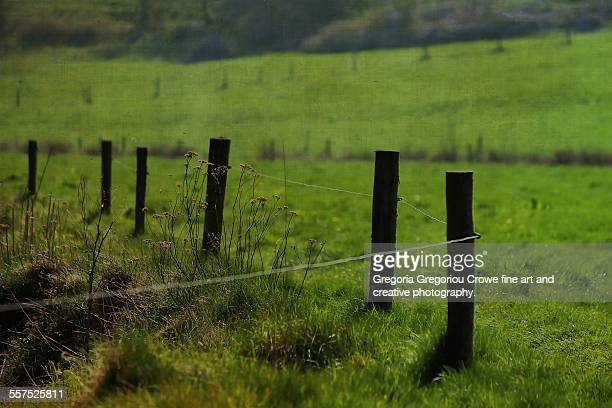 farm fence line - gregoria gregoriou crowe fine art and creative photography fotografías e imágenes de stock