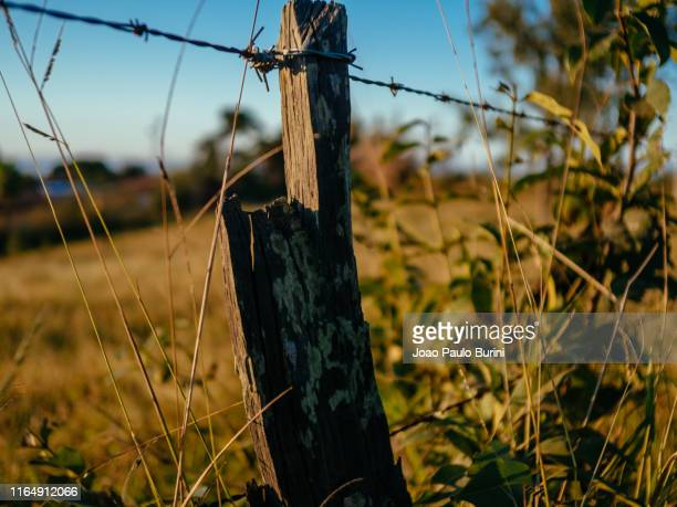 farm fence with barbed wire on a field - rústico stock pictures, royalty-free photos & images