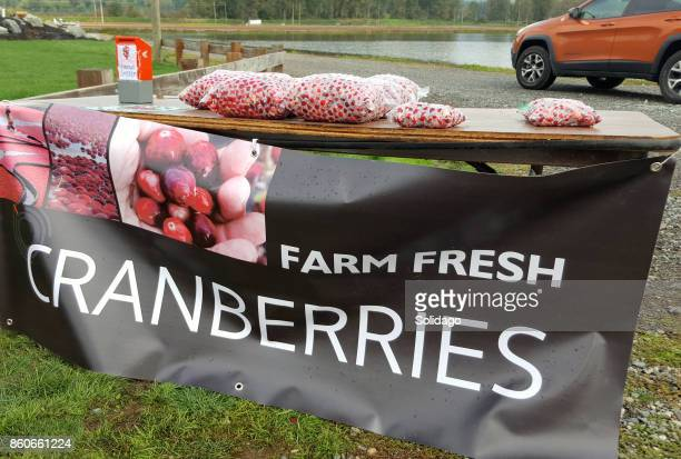 farm fresh cranberries for sale in the country - cranberry harvest stock pictures, royalty-free photos & images