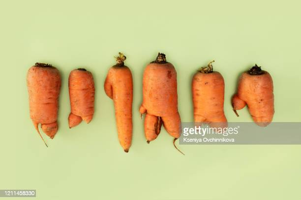 farm fresh ugly carrots bent and twisted - form stock-fotos und bilder