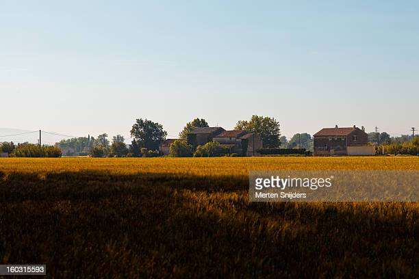 farm house behind grain field - bedarrides photos et images de collection