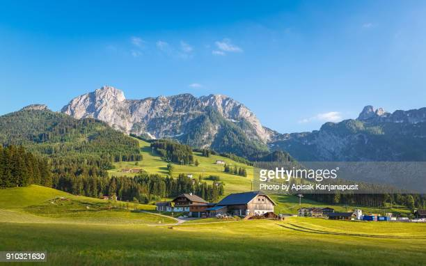 farm house in europe - farmhouse stock pictures, royalty-free photos & images