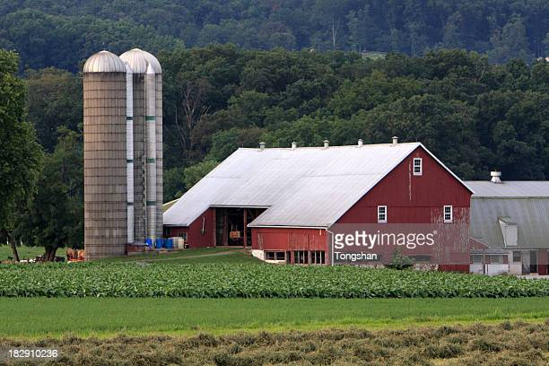 farm house - lancaster county pennsylvania stock pictures, royalty-free photos & images