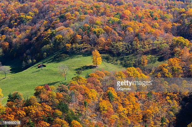 Farm house surrounded by colorful Autumn forest