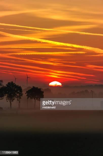 霧の中の農場 - オランダ リンブルフ州 ストックフォトと画像