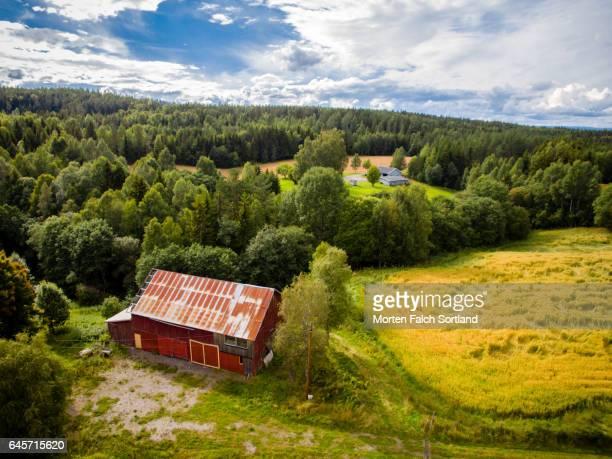 Farm in Nes