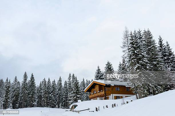 "farm in the austrian alps in winter - ""sjoerd van der wal"" or ""sjo"" stock pictures, royalty-free photos & images"