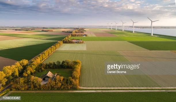 farm in the noordoostpolder near the ijsselmeer amidst colourful fields and wind turbines. - friesland noord holland stockfoto's en -beelden