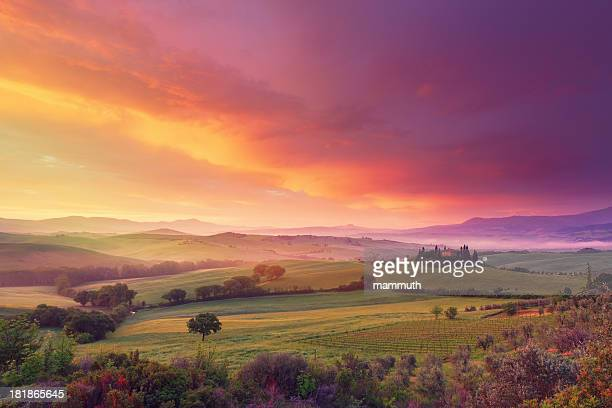 farm in tuscany at dawn - avondschemering stockfoto's en -beelden