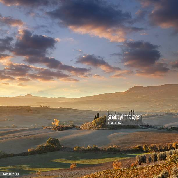 farm in tuscany - val d'orcia stock pictures, royalty-free photos & images