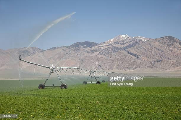 Farm irrigation in Idaho