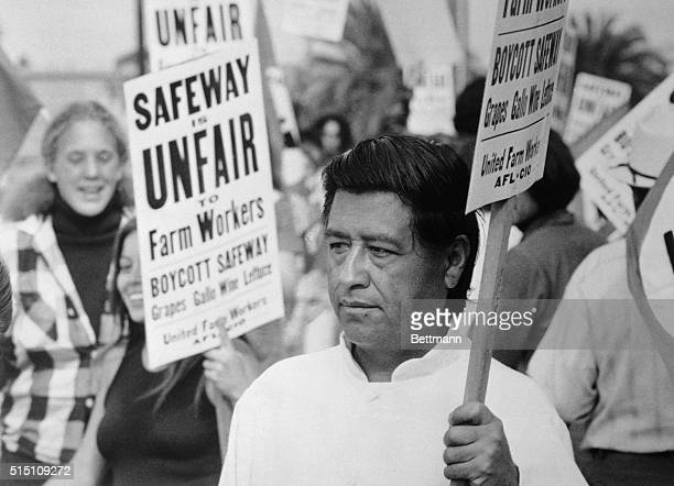 Farm labor leader Cesar Chavez pickets here outside San Diego area headquarters of Safeway markets Picketing was in protest over the arrest of 29...