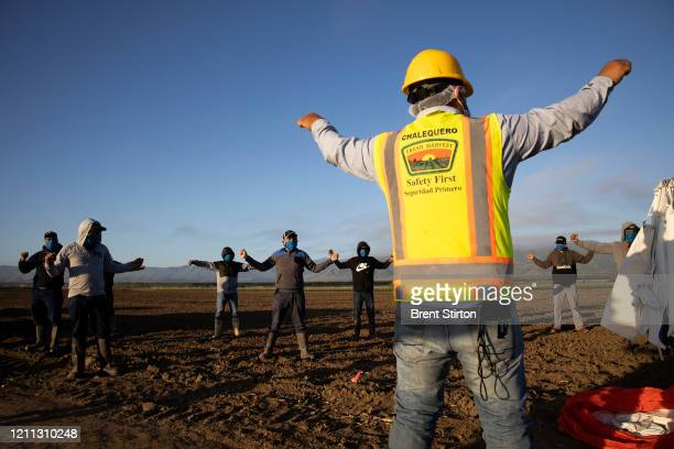 Farm laborers with Fresh Harvest exercise in the early morning before work on April 28 2020 in Greenfield California Fresh Harvest is the one of the...