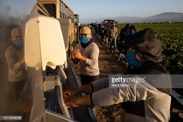Farm laborers with Fresh Harvest wash their hands before work on April 28, 2020 in Greenfield, California. They practice social distancing, and...