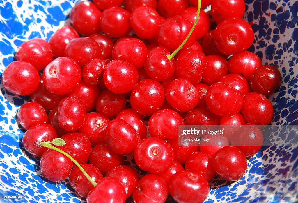 Farm Life is Just a Bowl of Cherries : Stock Photo