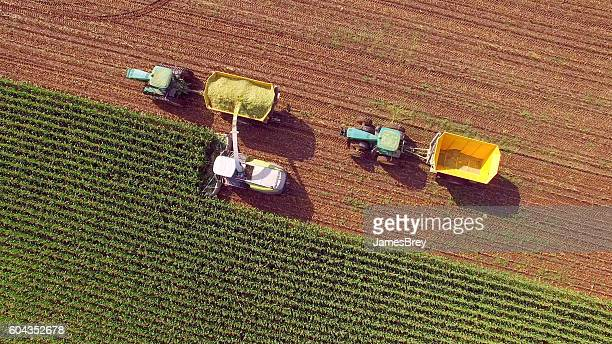 farm machines harvesting corn for feed or ethanol - harvest stock photos and pictures