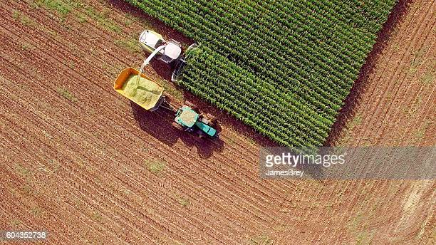 farm machines harvesting corn for feed or ethanol - sustainability stock photos and pictures
