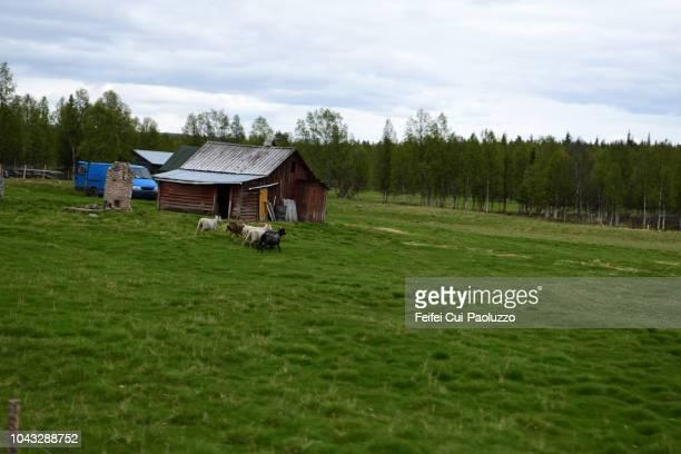 Farm near Sodankylä, Finland