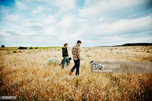Farm owners walking with dogs through field