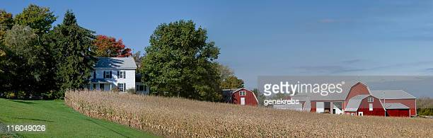 Farm Panorama in Autumn
