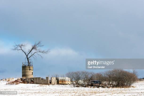 Farm Ruins in Winter