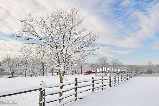 farm scenics in winter - pennsylvania stock pictures, royalty-free photos & images