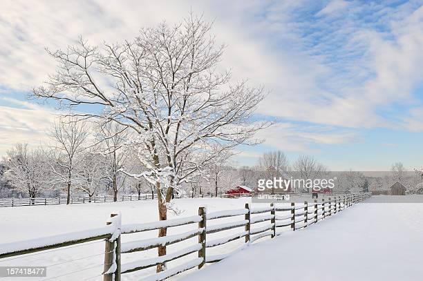 farm paisagens - pensilvânia - fotografias e filmes do acervo