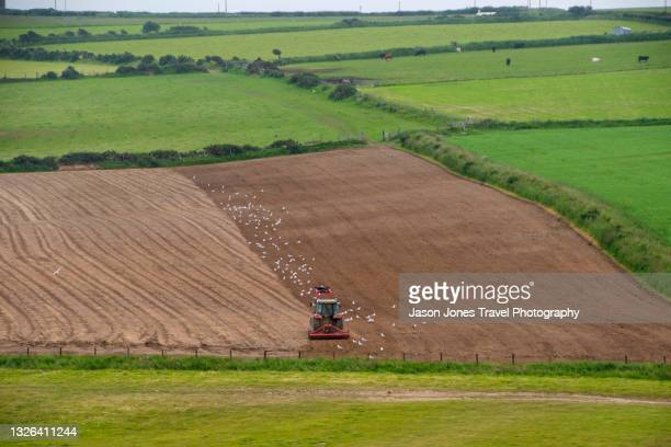 a farm tractor working in a field in wales - newport wales stock pictures, royalty-free photos & images