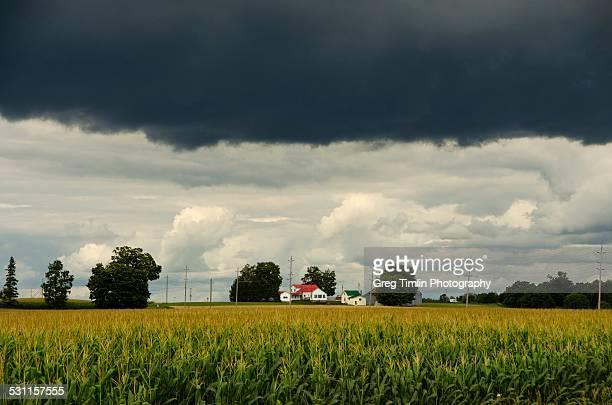 farm under heavy sky - contea di prince edward ontario foto e immagini stock
