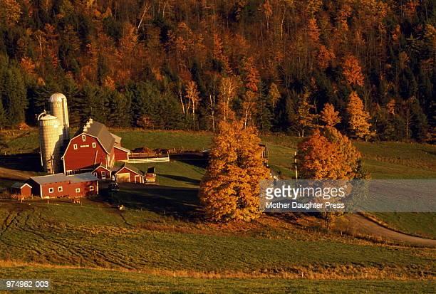 Farm with fall trees, Caledonia City, Vermont, USA