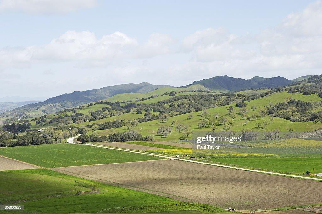 Farm with green hills : Stock-Foto