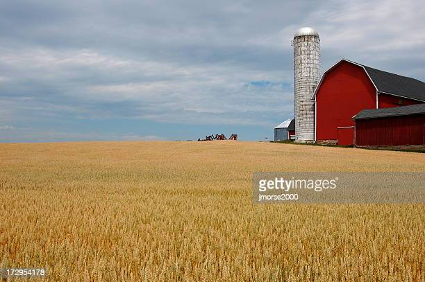farm with red barn and blue sky - finger lakes stock pictures, royalty-free photos & images