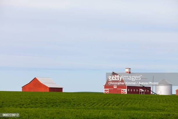 farm with red barns and field, palouse, washington state, usa - barn stock pictures, royalty-free photos & images