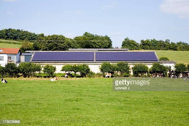 Farm with Solar Panel