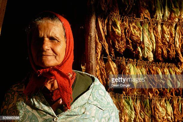 Farm Woman by a Rack of Drying Tobacco Leaves