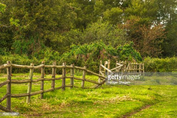 A farm wooden pole fence, neglected and collapsing - needs attention