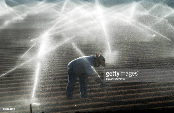 Farm worker adjusts sprinkler heads spraying water that comes from the Colorado River October 18, 2002 near El Centro, California. Southern...