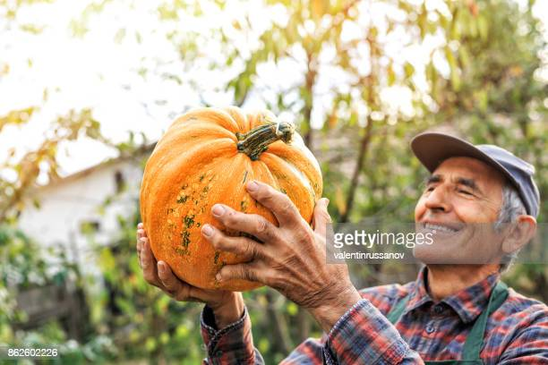 Farm Worker at a Pumpkin Patch
