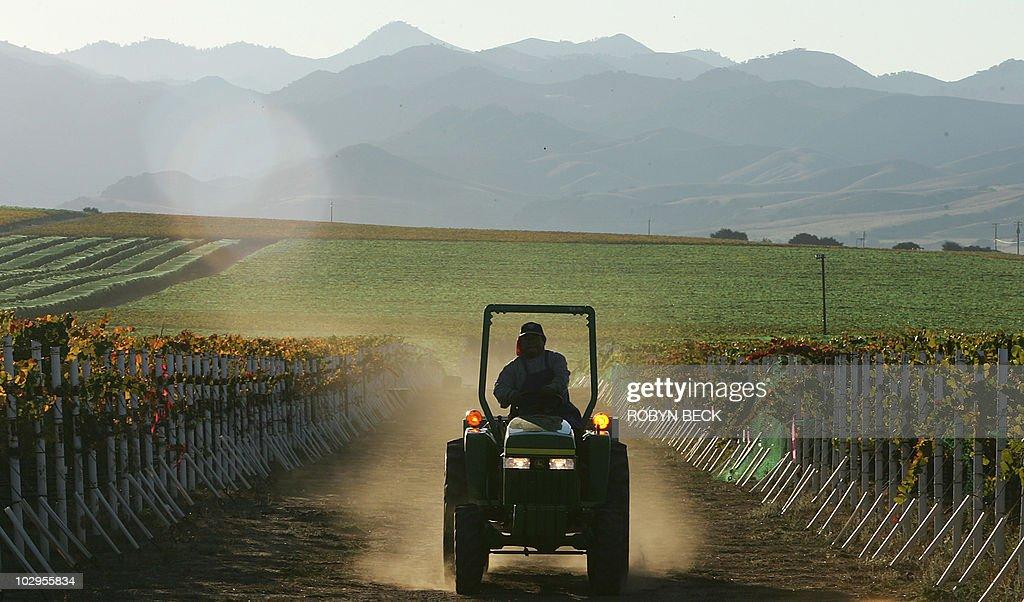 A farm worker drives a tractor through t : News Photo