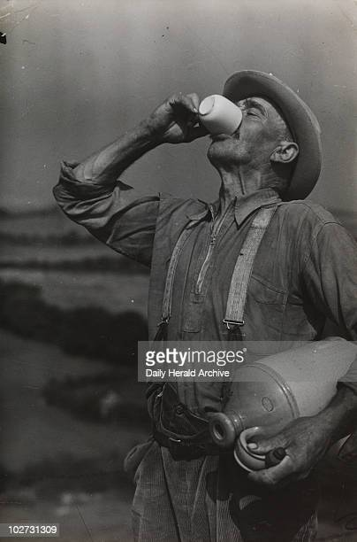 Farm worker George White drinks cider on his lunch break by Edward Malindine A photograph taken by Malindine for the Daily Herald newspaper England...