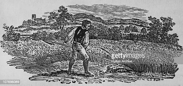 A farm worker harvesting grain with a scythe circa 1797 Woodcut by Thomas Bewick
