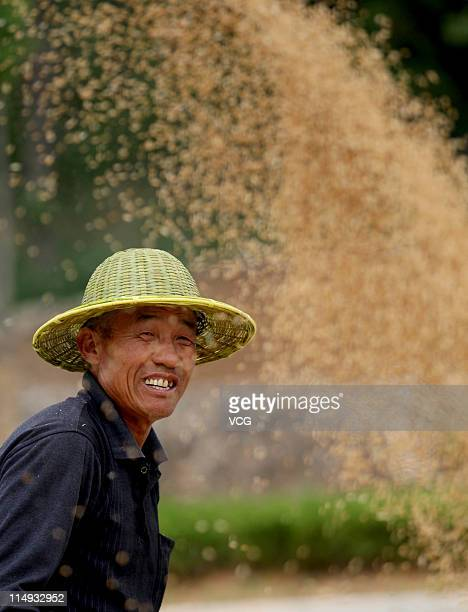 Farm worker harvests wheat in a field on May 29, 2011 in Huaibei, Anhui Province of China. Anhui province will put 125,000 combine harvesters into...