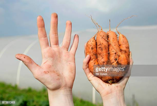 farm worker holding odd shaped carrot