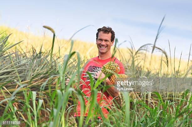 Farm worker in pineapple field, Maui, Hawaii