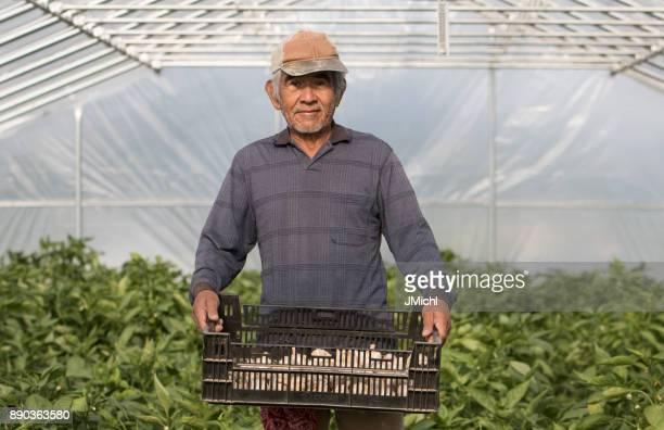 trabalhador rural - trabalhador rural - fotografias e filmes do acervo