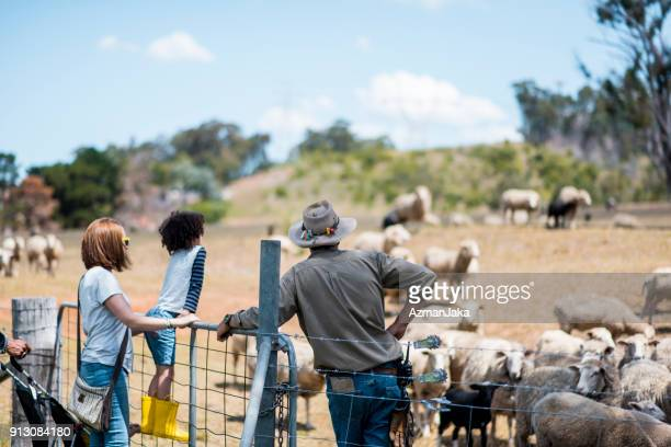 farm worker showing the farm to a family - new south wales stock pictures, royalty-free photos & images